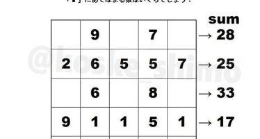 5x5 matrix and sums